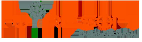 Futre Soft Logo